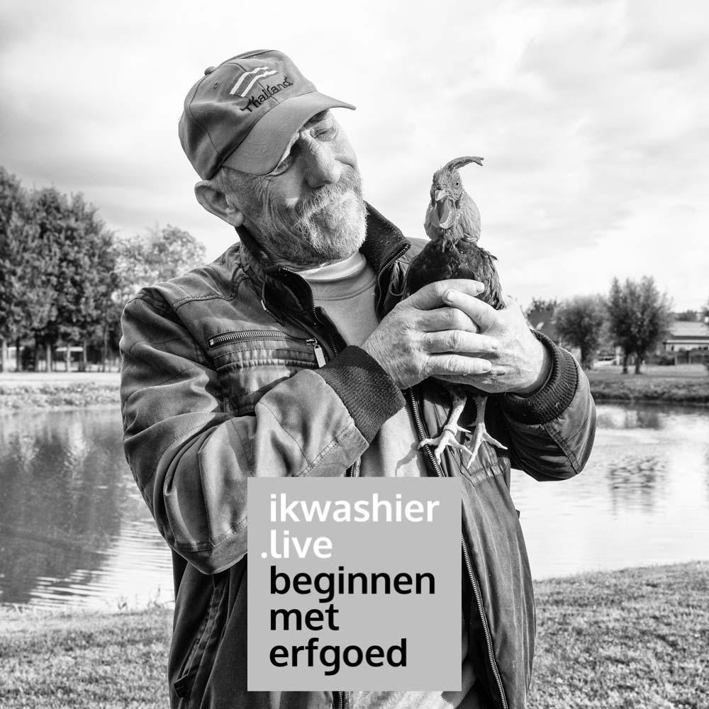 Beginnen met erfgoed - ikwashier.live - Kweken van haantjes voor hanenzetten met Jacques Warniers